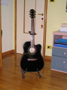 Il nuovo acquisto del parco chitarre