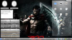 iCTF 2009 - Desktop